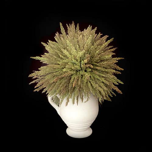 vase fleurs sechees2 1